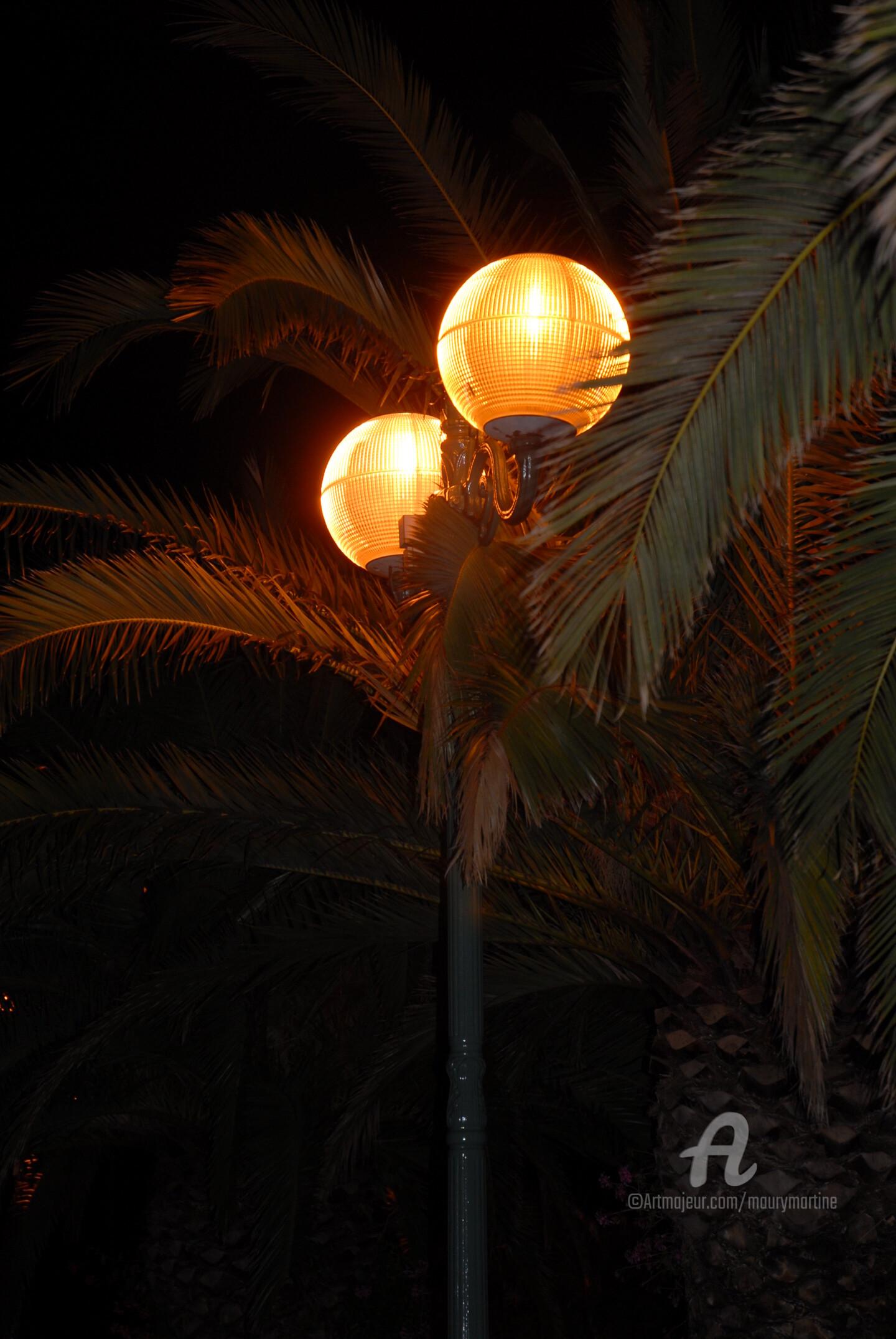 Martine Maury - sous les palmiers
