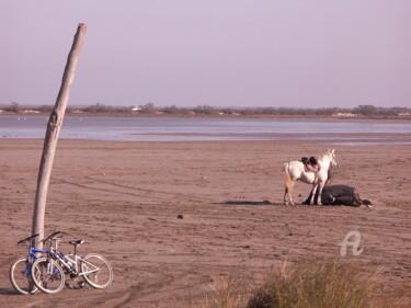 cheval et vélos