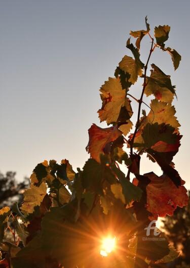 soleil etincelant